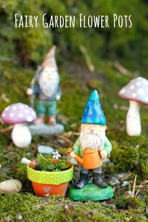 Fairy/Miniature Garden Workshop